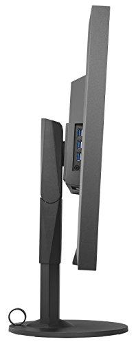 Eizo EV3237-BK 80 cm (31,5 Zoll) Monitor (4K UHD, DVI, HDMI, 5ms Reaktionszeit) schwarz - 4